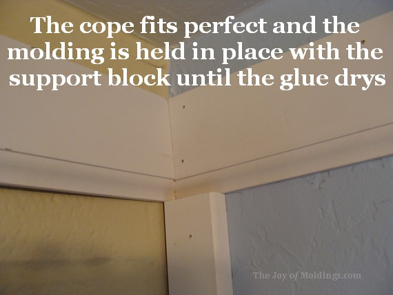 coped crown molding lower detail of buildup
