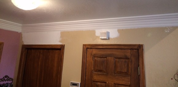 painted crown molding